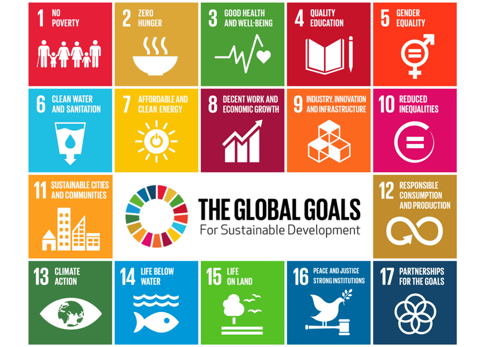 Global Goals | Dutch Reinvention School